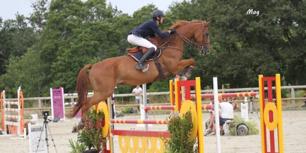 Concours CSO Pro (GP 140) Tours Pernay